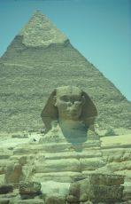 Image: Sphinx and Cheops pyramid - Egypt